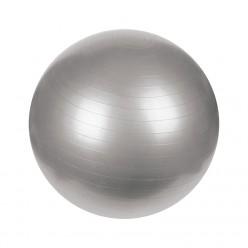 Gym Ball Basic Line PF-7020-75 Gris 75 cm
