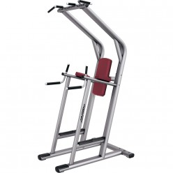 Banco Life Fitness Chin Dip Leg Raise Signature Series