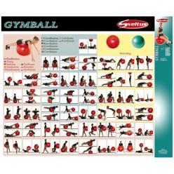 Póster Ejercicios con Gymball Sveltus 0436