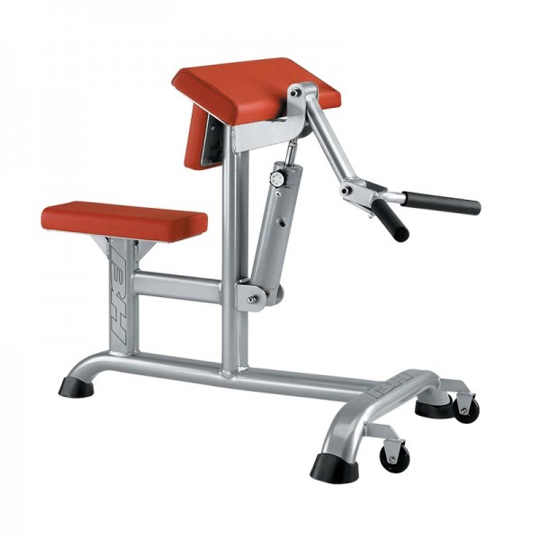 Biceps y Triceps BH XT1130