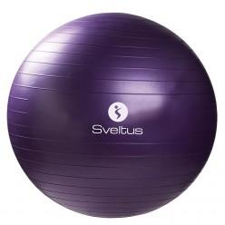 Gymball Sveltus 0445 75cm Lila